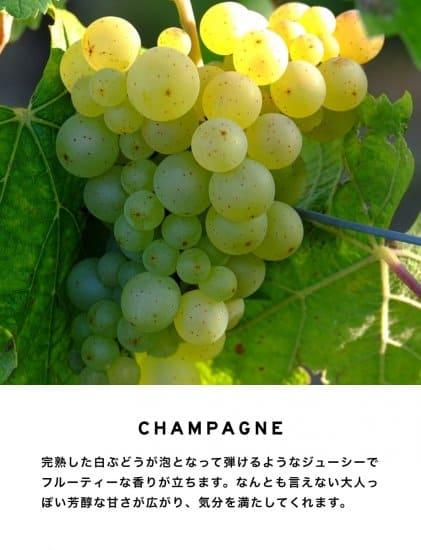 レイヤードフレグランス シャンパン